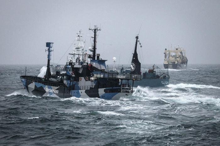 Sea Sheperd aiuta governo Liberia in lotta a pesca illegale