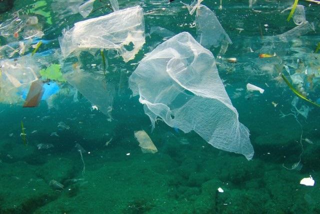 Rotte della plastica